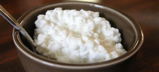 Jak zrobić serek z jogurtu dla dziecka