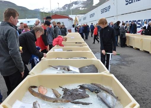 Фестиваль рыбы в Дальвике