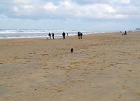 Пляж в Де Хаане