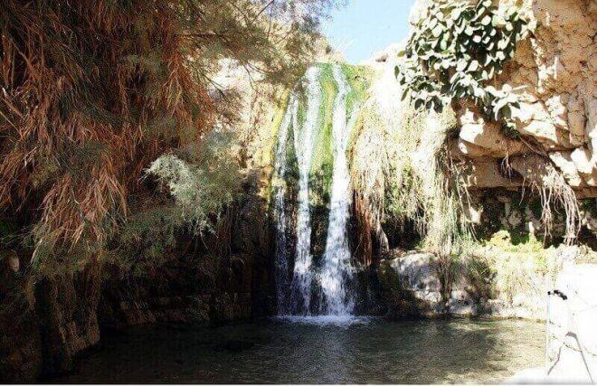 Национальный парк Эйн-Геди