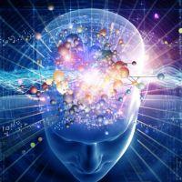 дијагностика интелигенције и способности