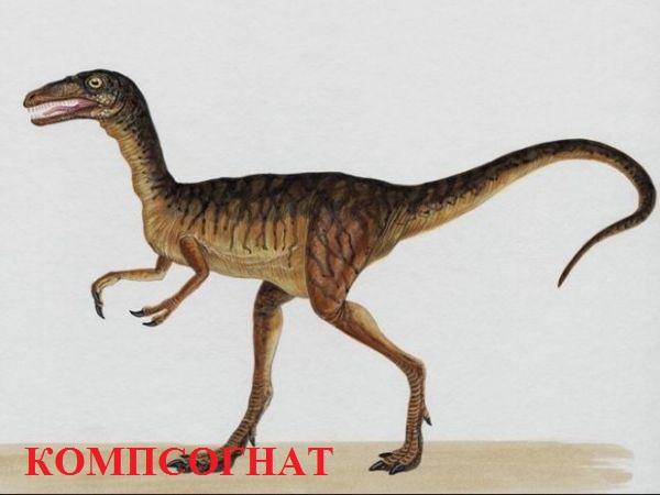 dinosauri za djecu 8