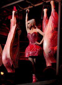 obleka mesa lady gaga 3