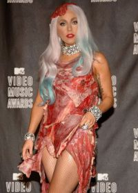 obleka mesa lady gaga 8
