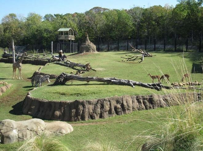 Зоопарк в Дубае