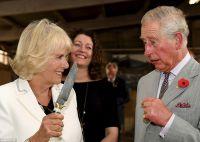 Чарльз явно напуган действиями супруги