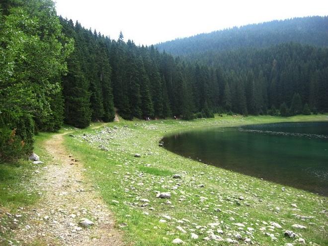 Природа парка