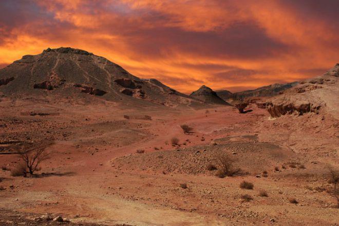 Пустыня Арава