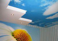 Stropni strop ekostil 1