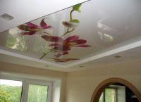 Stropni stropovi ekostil 2