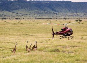 Над Нгоронгоро на вертолете