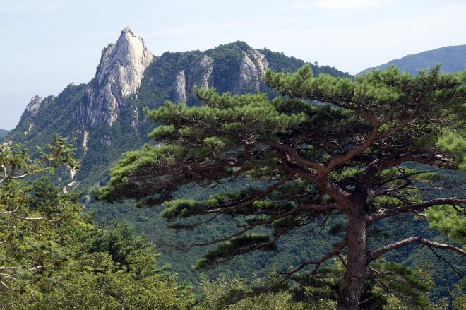 Национальный парк в Южной Корее