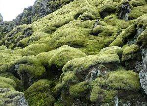 Вулкан Лаки характеризуется живописной, сказочной местностью