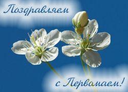 1 maja Dzień wiosny i porodu