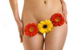 typy rtů ženských pohlavních orgánů