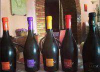 Коллекция вин в 2 Archi Ristorante