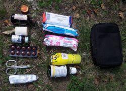 Što bi trebalo biti u ormariću lijekova tijekom pješačenja