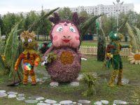 Festiwal kwiatów5