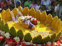 Festiwal kwiatów6