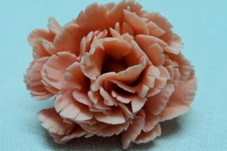 Уживо цвеће из теста 9