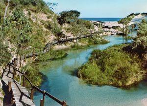 Дорога к жилищам аборигенов, сохранившимся на острове Фрейзер