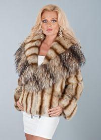 катерица coat6