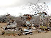 Галапагосские острова, бухта Пост Офис