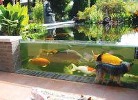 akwarium ogrodowe1