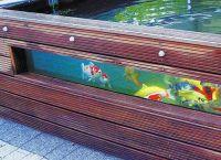 akwarium ogrodowe2