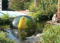 akwarium ogrodowe6