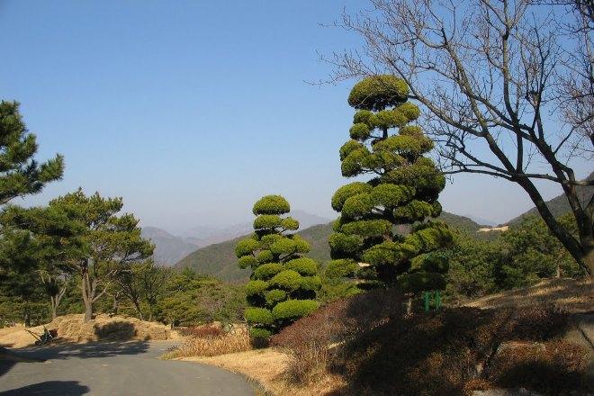Природа города Кимхэ