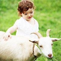 Koza mlijeka u kojem dobu