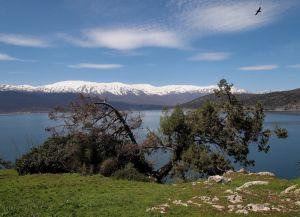 Вид с острова на противоположный берег