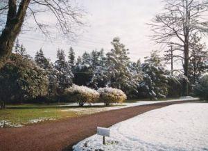 Парк Jardín de Los Ceibos