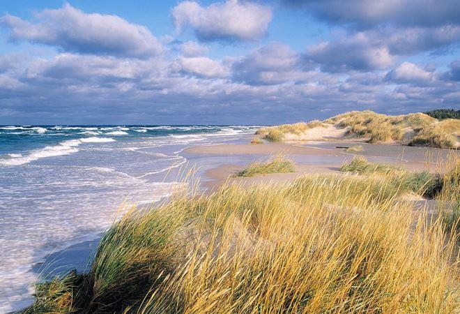 Пляж в Готска Санден