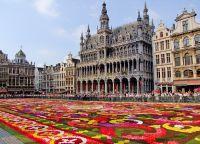 Цветочный ковер на площади