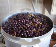 recept sok od grožđa u sokovoj štednjaku