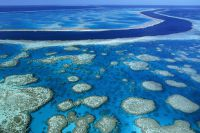 Wielka rafa bariery australia2