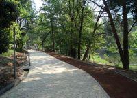 Пешеходная и беговая дорожки в парке
