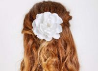 Posnetki za lase2