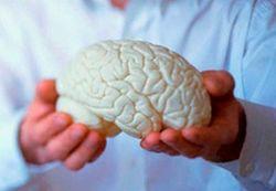 diagnoza wyższych funkcji umysłowych