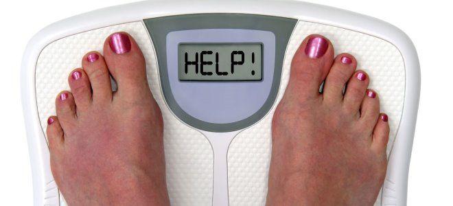 спорыш для похудения