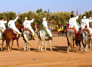 Фестиваль лошадей в Марокко