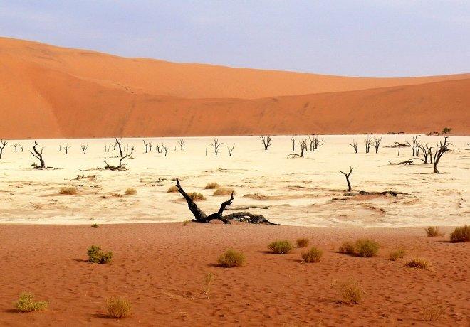 Пустыня и дюны