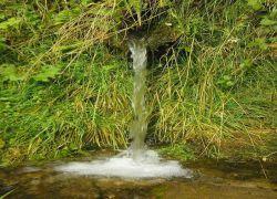 где да добијеш сву воду