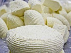 Domowy ser Adyghe z mleka