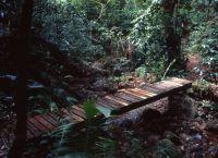 Ботанический сад Карамбола