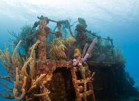 Дайверов привлекают затонувшие корабли