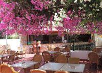 Бар отеля Corfu
