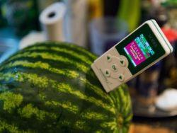 проверити лубенице на нитратима
